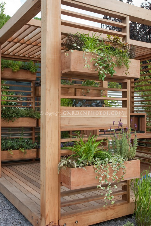 Creating a backyard oasis for Patio herb garden designs containers